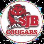 St John's Cougars